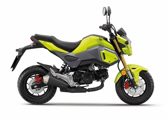 Honda Msx125 Ph Motorcycles